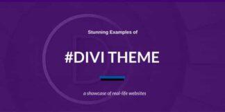 Divi-WordPress-Theme-gpltop