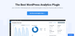 MonsterInsights-The-Best-Google-Analytics-Plugin-for-WordPress-GPLTop