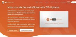 WP-Optimize-Premium-WordPress-Plugin-GPLTop