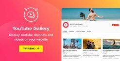 YouTube-Plugin-WordPress-YouTube-Gallery-GPLTop